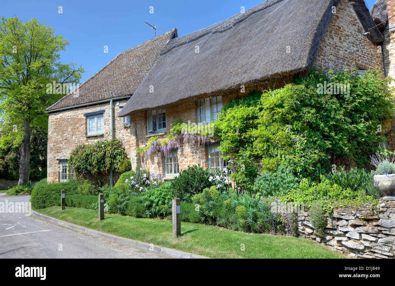Thatched cottage with pretty garden, Kingham, Oxfordshire, England - Stock Image