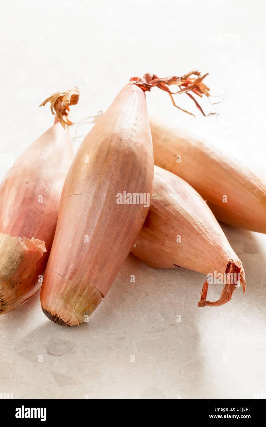 Banana shallots - Stock Image