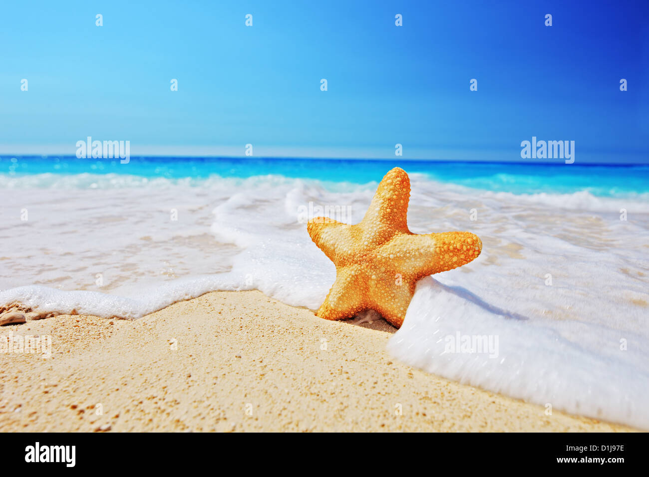 Starfish on a beach with clear sky and wave, Greece Stock Photo
