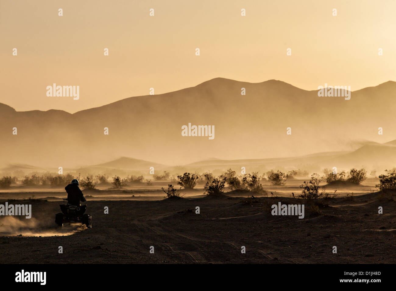 ATV rider runs the sand dunes of Amargosa Valley State Park, NV. - Stock Image