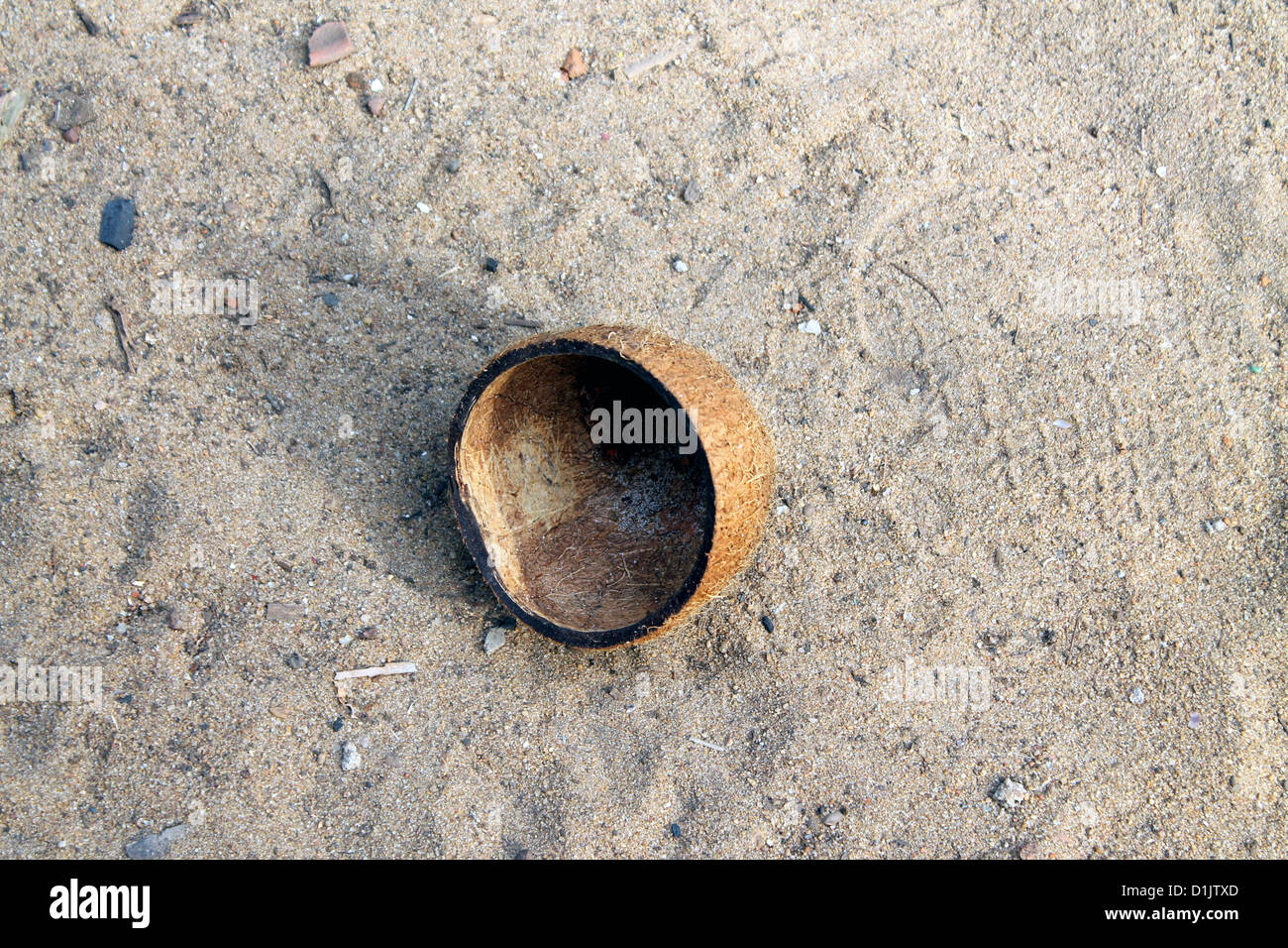 A coconut shell thrown away from the kitchen - Stock Image