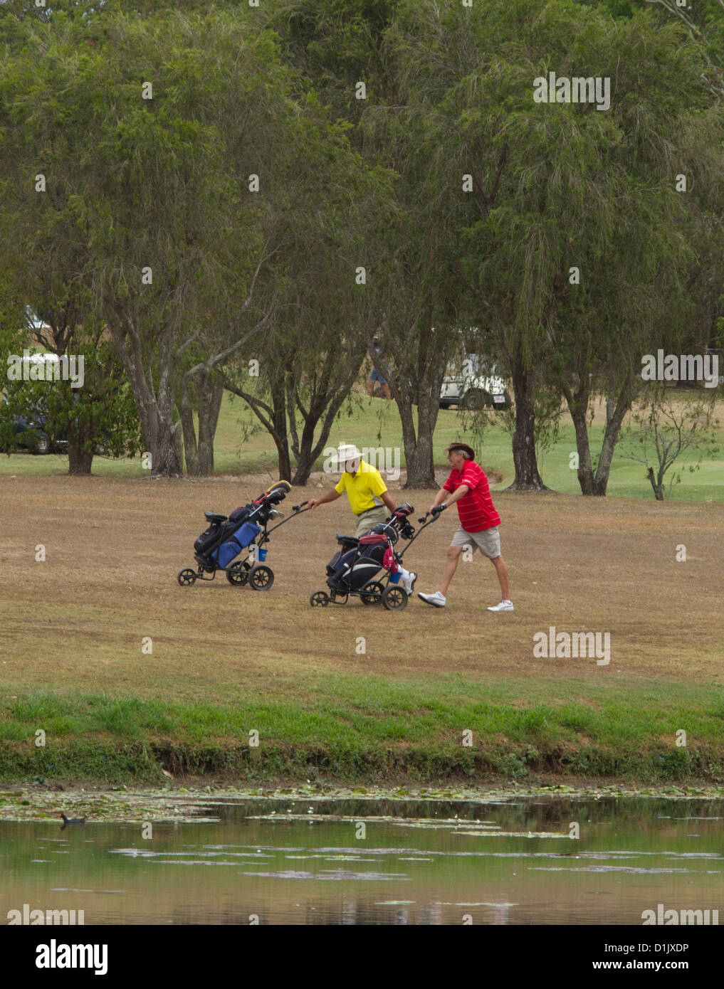 Two golfers pushing gulf buggies across green at golf course - Stock Image