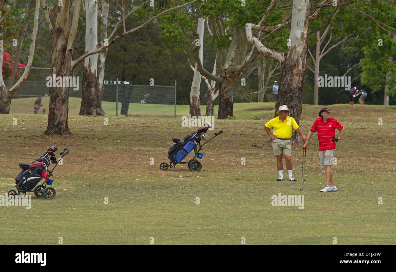 Golfers with golf buggies and clubs playing a game on golf course - Stock Image