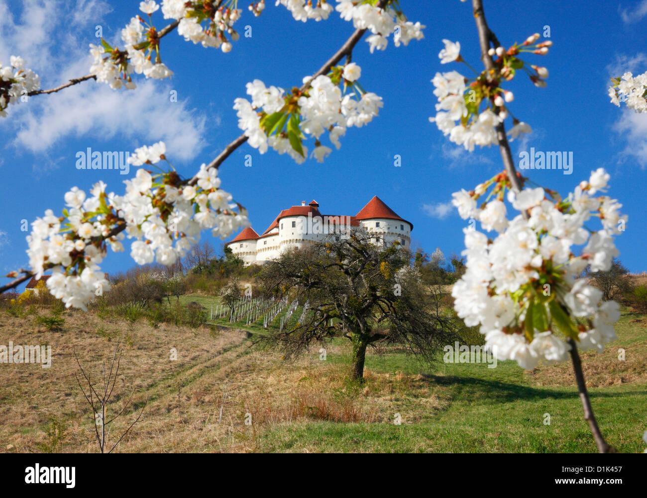 Veliki Tabor Castle - Croatia - Stock Image