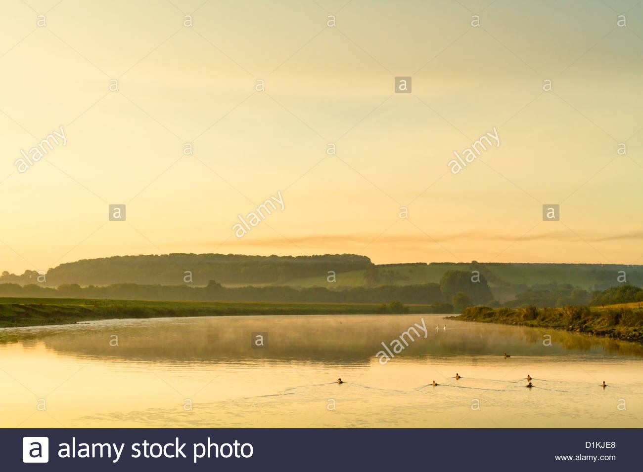 An English countryside and river landscape at dawn. The River Trent in Nottinghamshire, England, UK - Stock Image