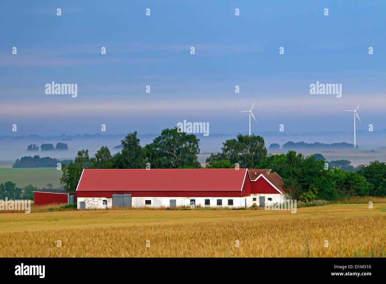 Wind turbines and red farm in wheat field, Skåne, Sweden, Scandinavia - Stock Image