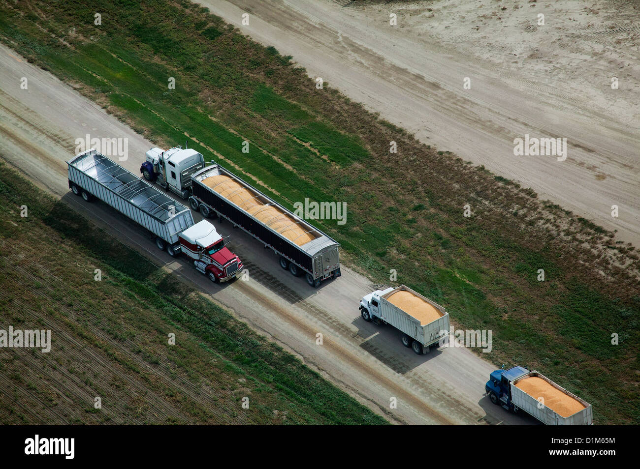 aerial photograph corn harvest delivery to cattle feedlot Nebraska - Stock Image