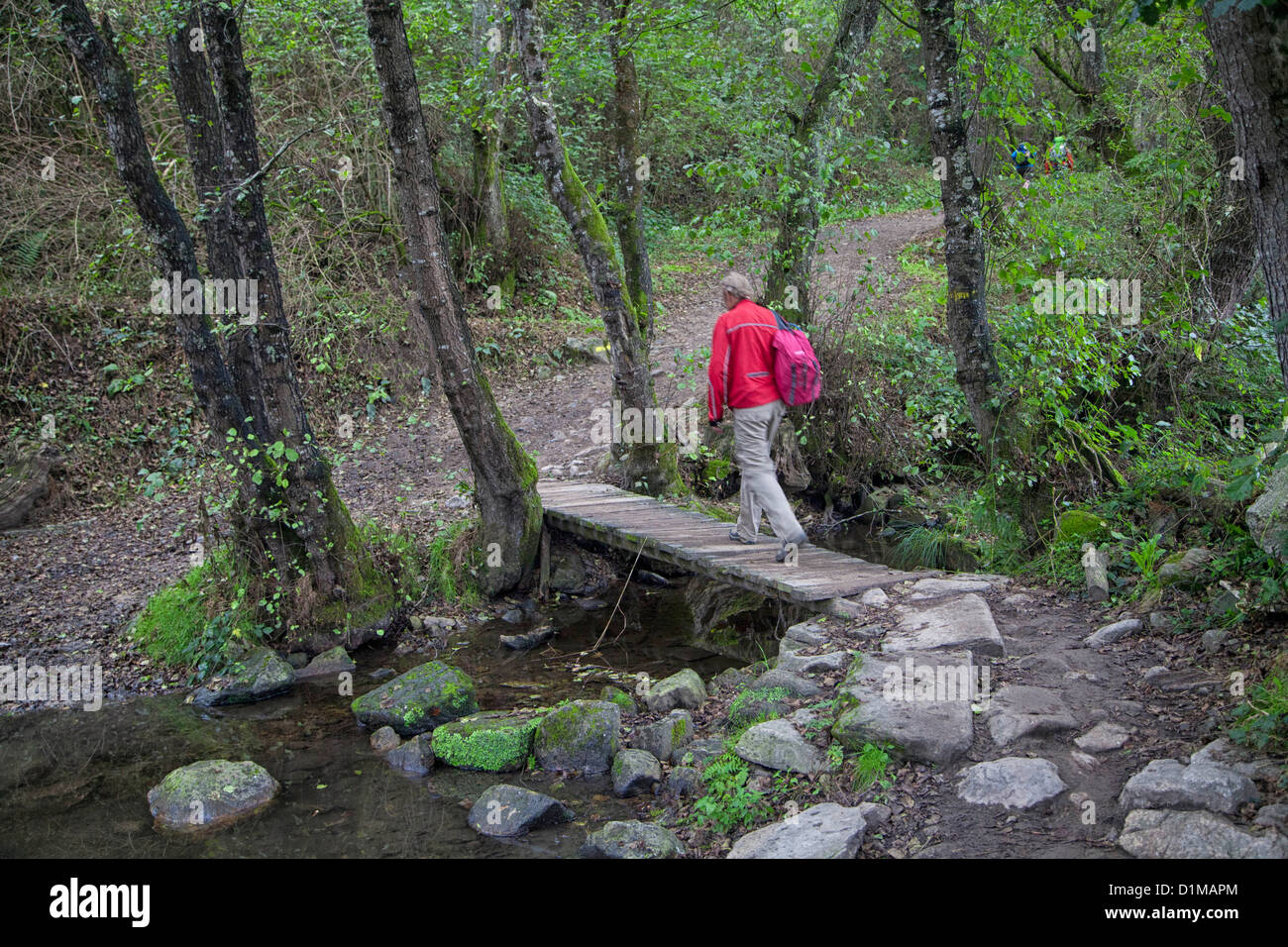 Pilgrim walking the Camino to Santiago crosses a bridge over a creek near Sarria Spain, along the The Way of St. - Stock Image