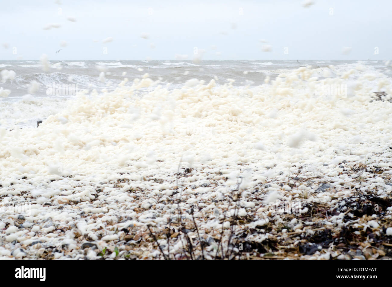 Spume (foam, froth) flying around the beach after stormy weather. - Stock Image