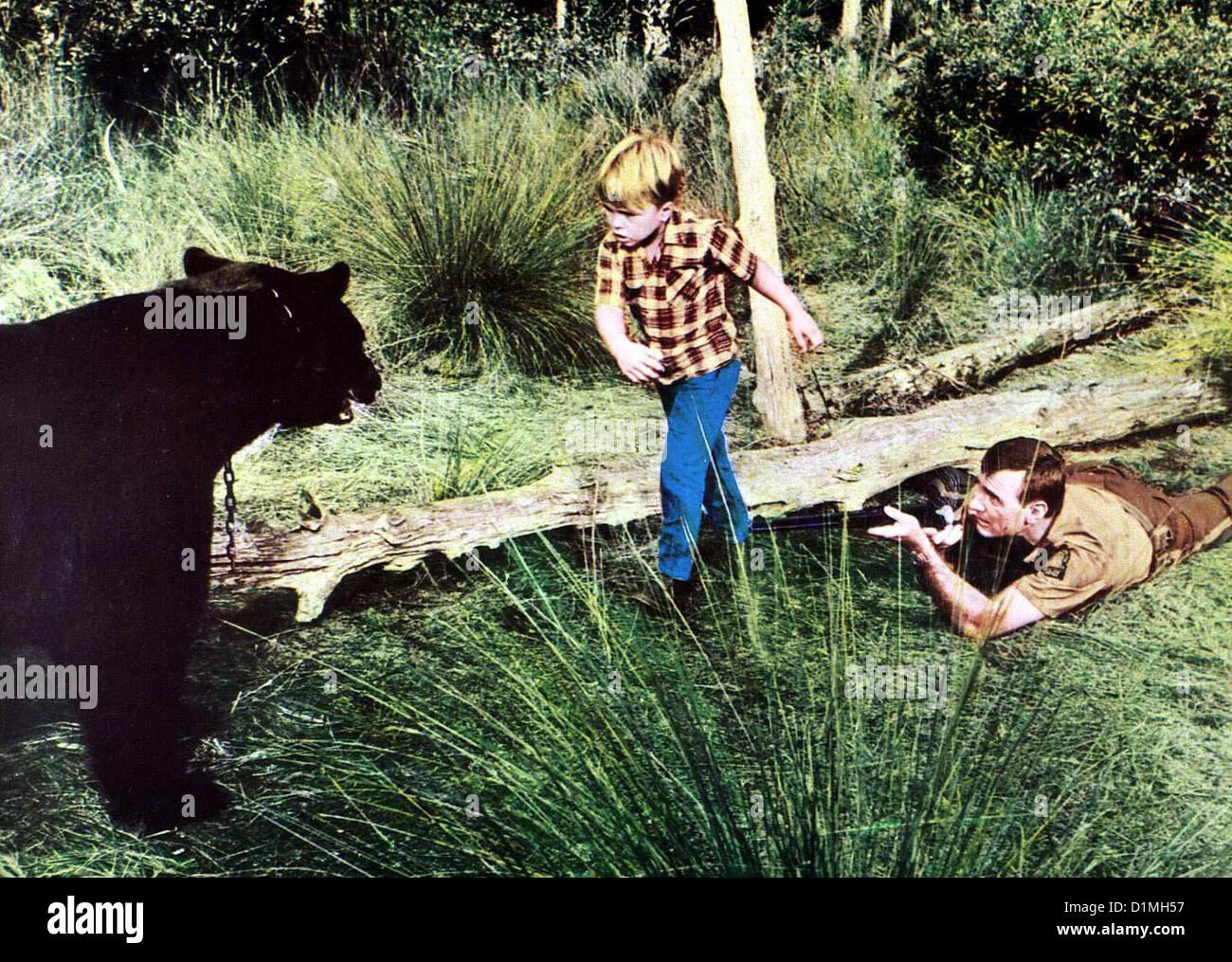 Der Sanfte Ben  Gentle Giant  Clint Howard, Dennis Weaver Mark (Clint Howard,l) freundet sich mit einem Baeren an, - Stock Image