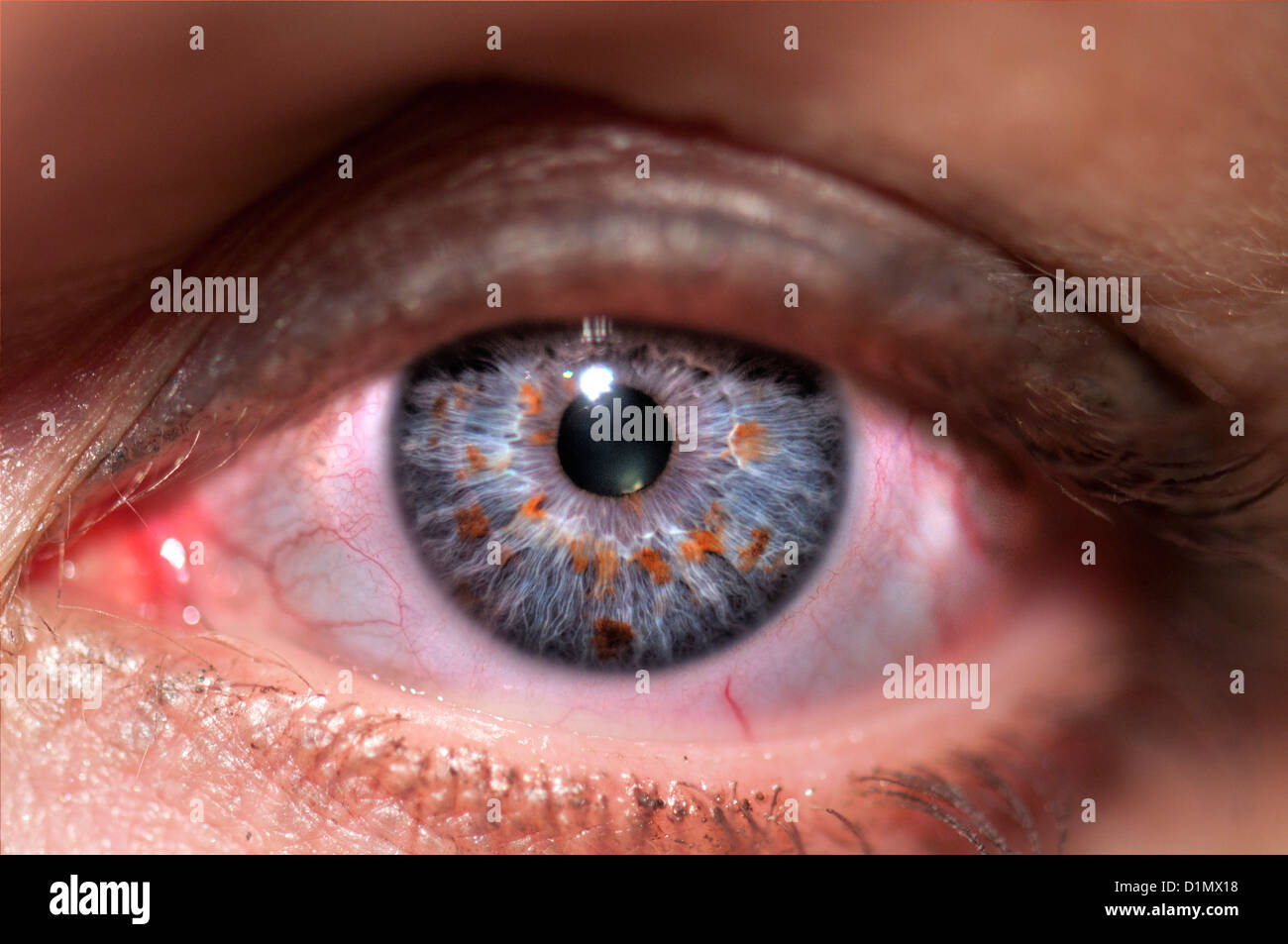 Extreme closeup of a human eye grey  - Stock Image