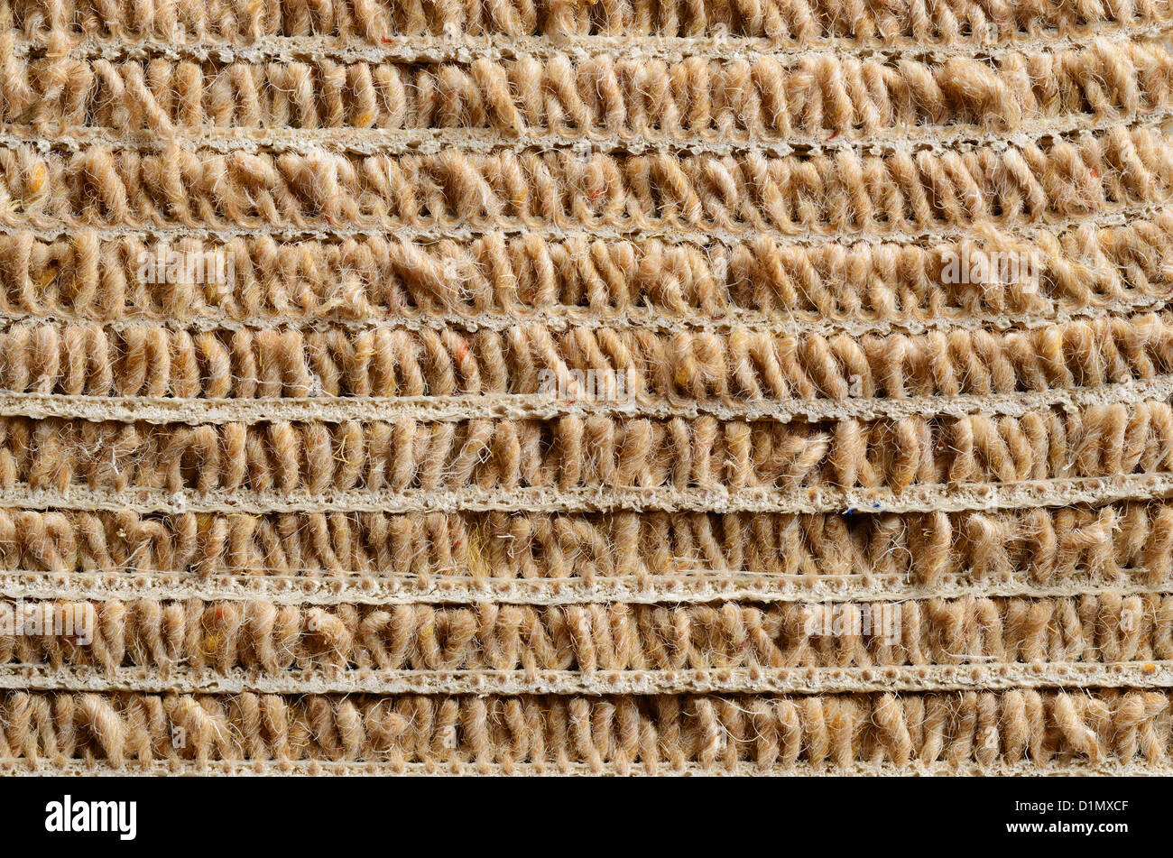 Cross section of a roll of beige carpet - Stock Image