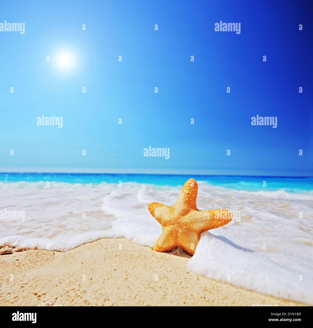 A view of a starfish on a beach with clear sky and wave, shot with a tilt and shift lens Stock Photo