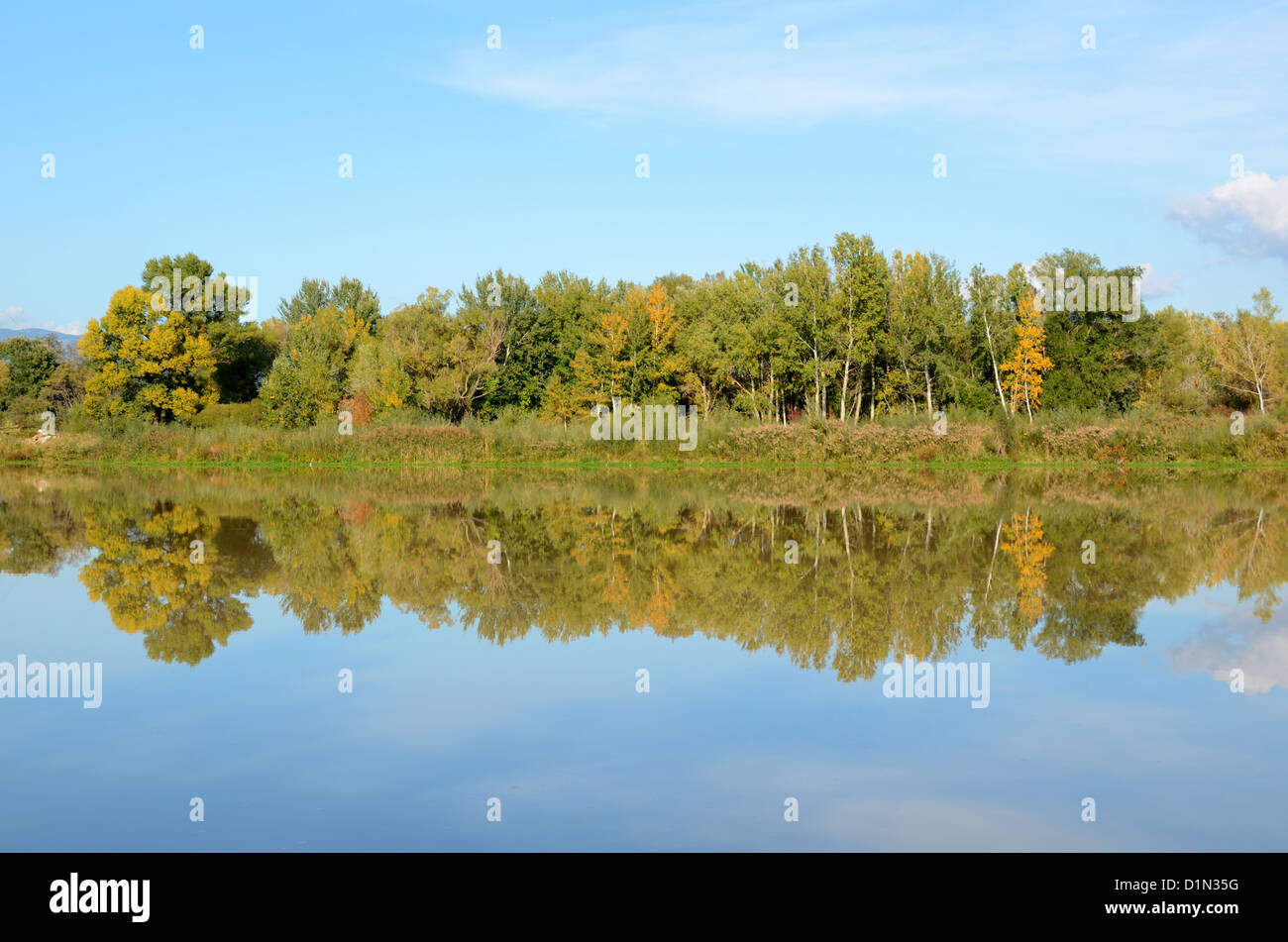 Durance River and Autumn Trees Reflected in River near Pertuis Provence France - Stock Image