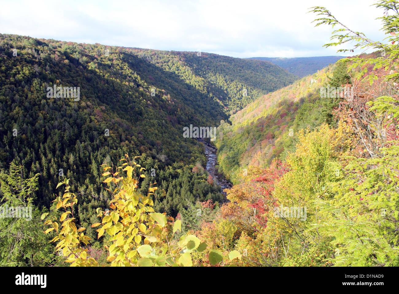Blackwater Falls State Park, Davis, West Virginia, America, USA - Stock Image