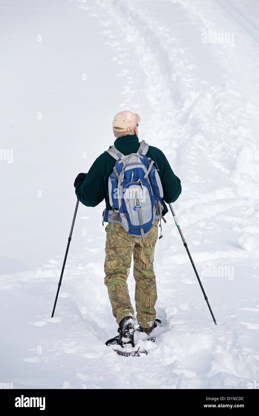 A snowshoer at Mount Bachelor Nordic Skiing area, central Oregon Cascades - Stock Image