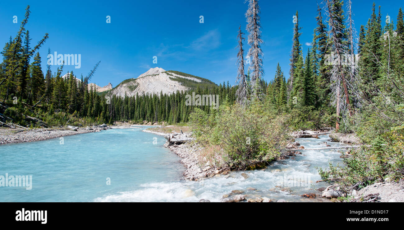 River on the icefield parkway in Jasper National Park, Alberta, Canada - Stock Image