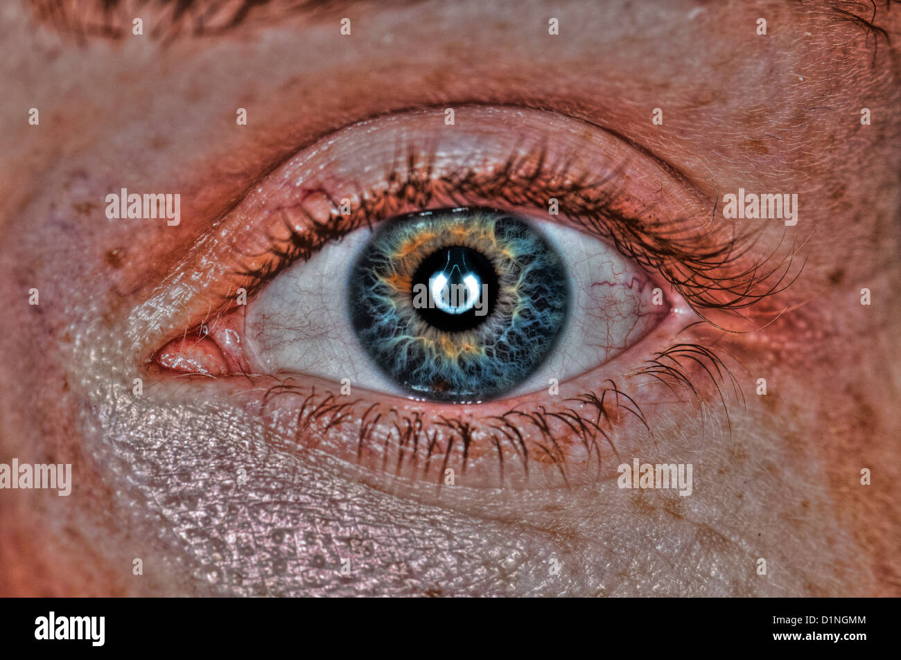 Extreme closeup of a human eye green - Stock Image