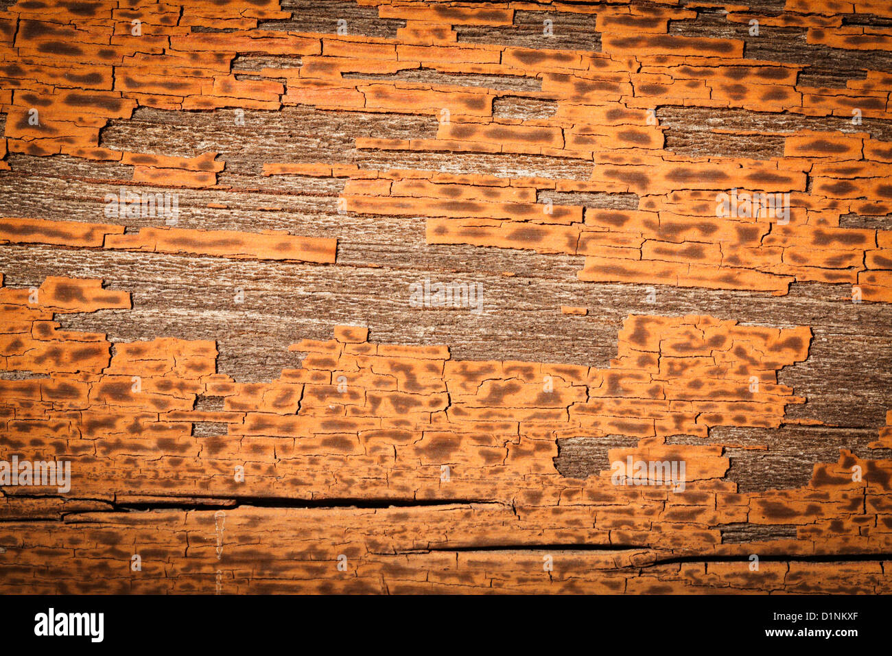 Some old wood siding showing reddish brown peeling paint. - Stock Image