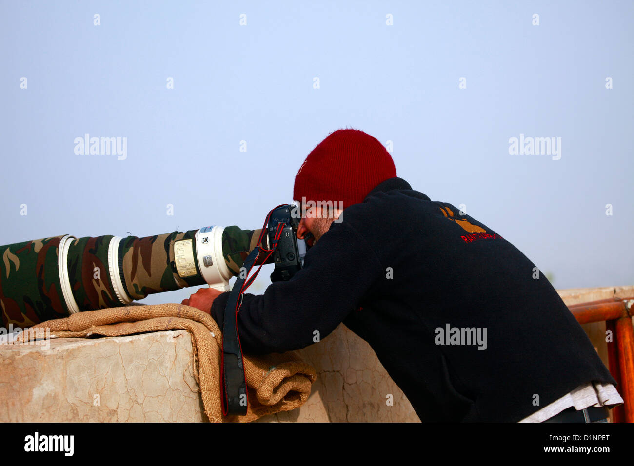 Wildlife Photographer - Stock Image