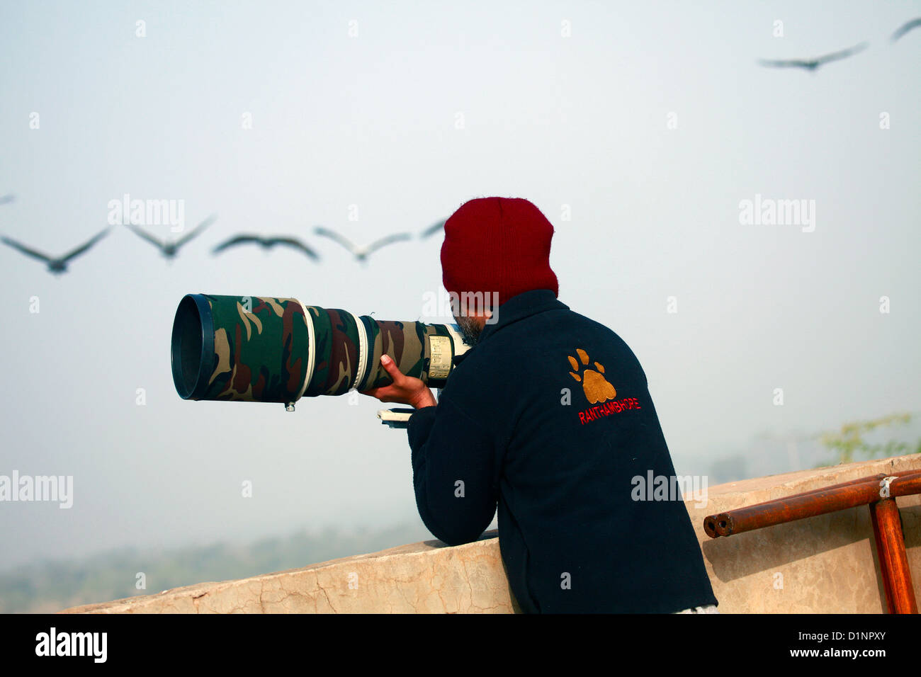 Professional Photographer - Stock Image