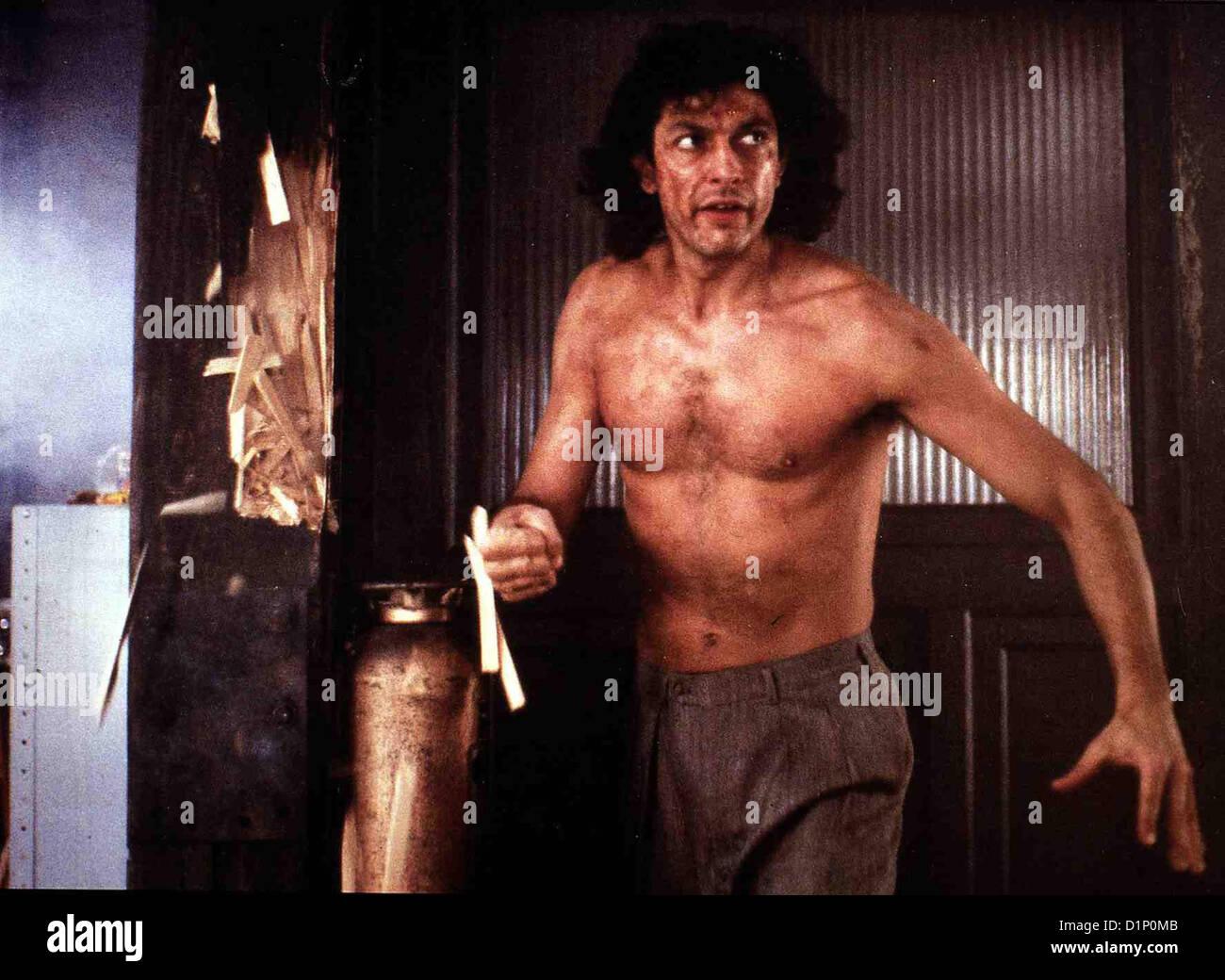 Die Fliege Jeff Goldblum