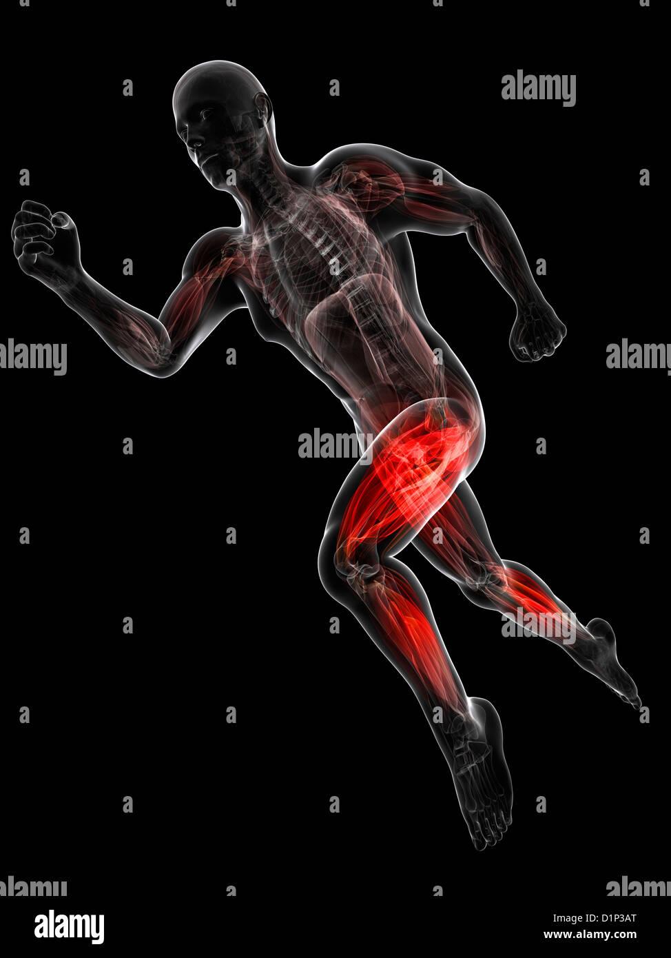 Sprinter, artwork - Stock Image
