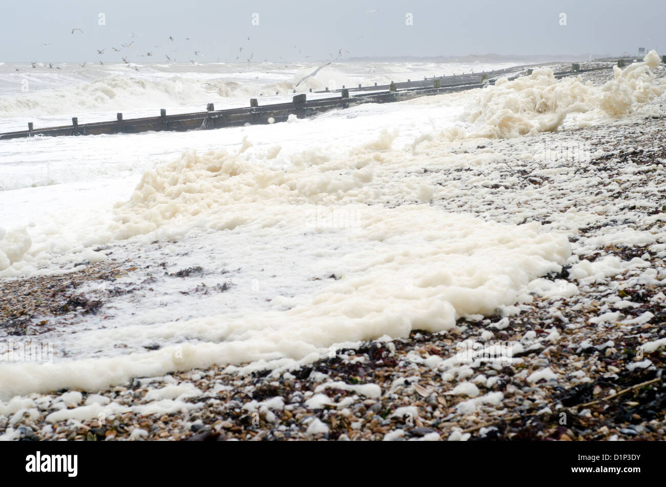 Spume (foam, froth) on the beach after stormy weather. - Stock Image