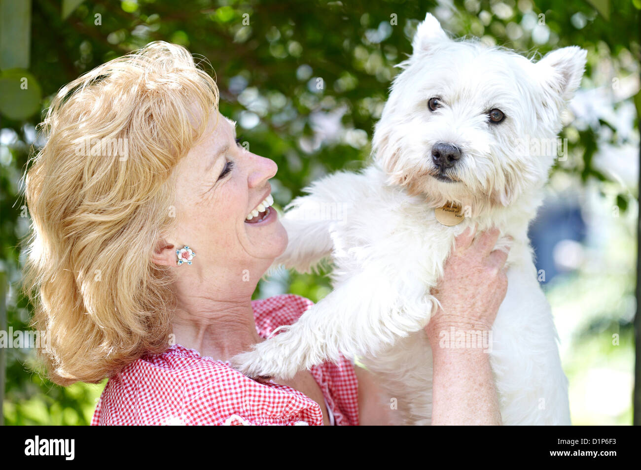 Woman with pet dog - Stock Image