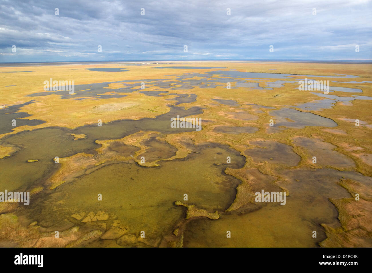 Alaska Arctic tundra potholes, Aerial view, Arctic landscape wilderness - Stock Image