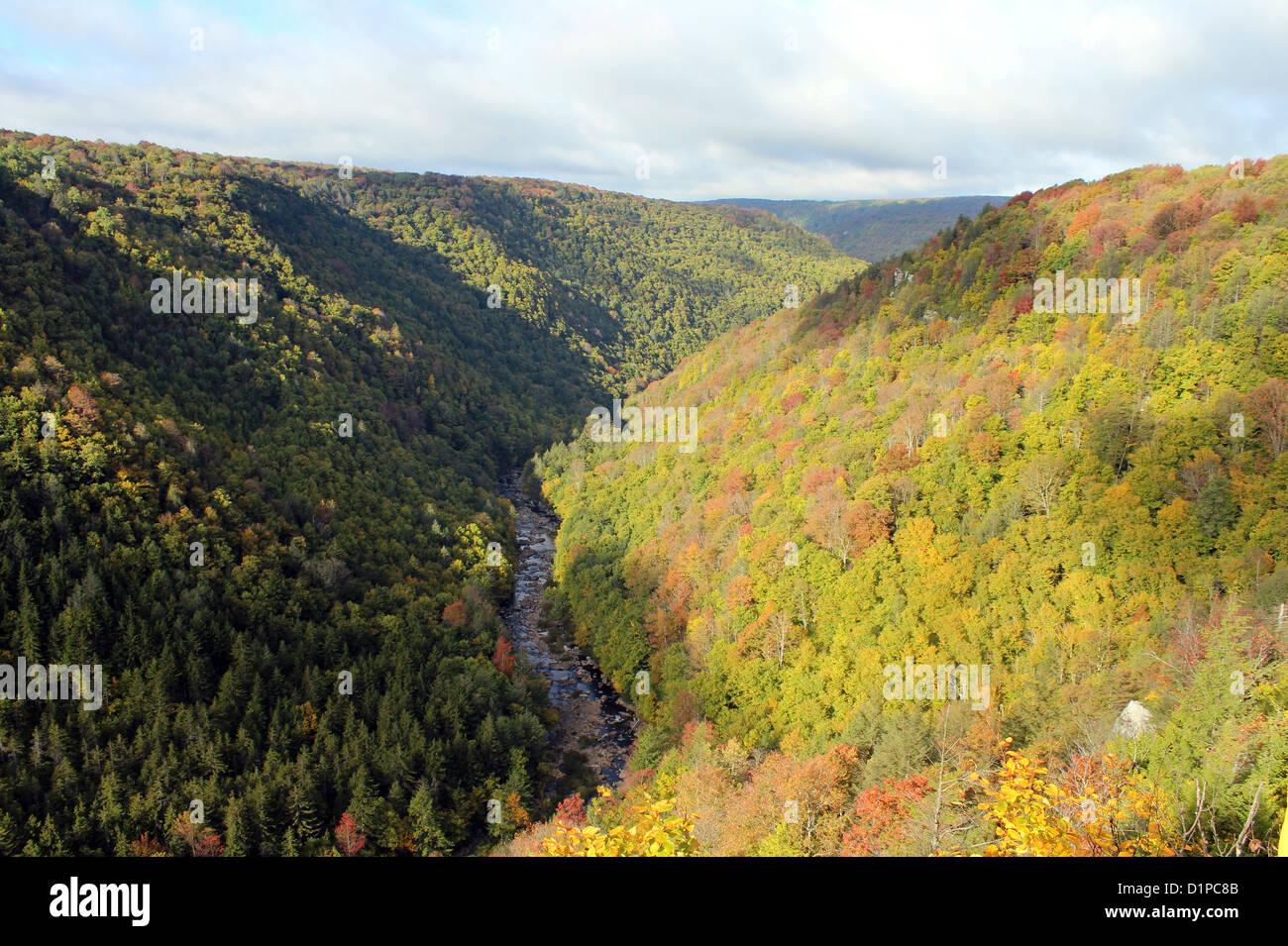 Blackwater Falls State Park, West Virginia, America, USA - Stock Image
