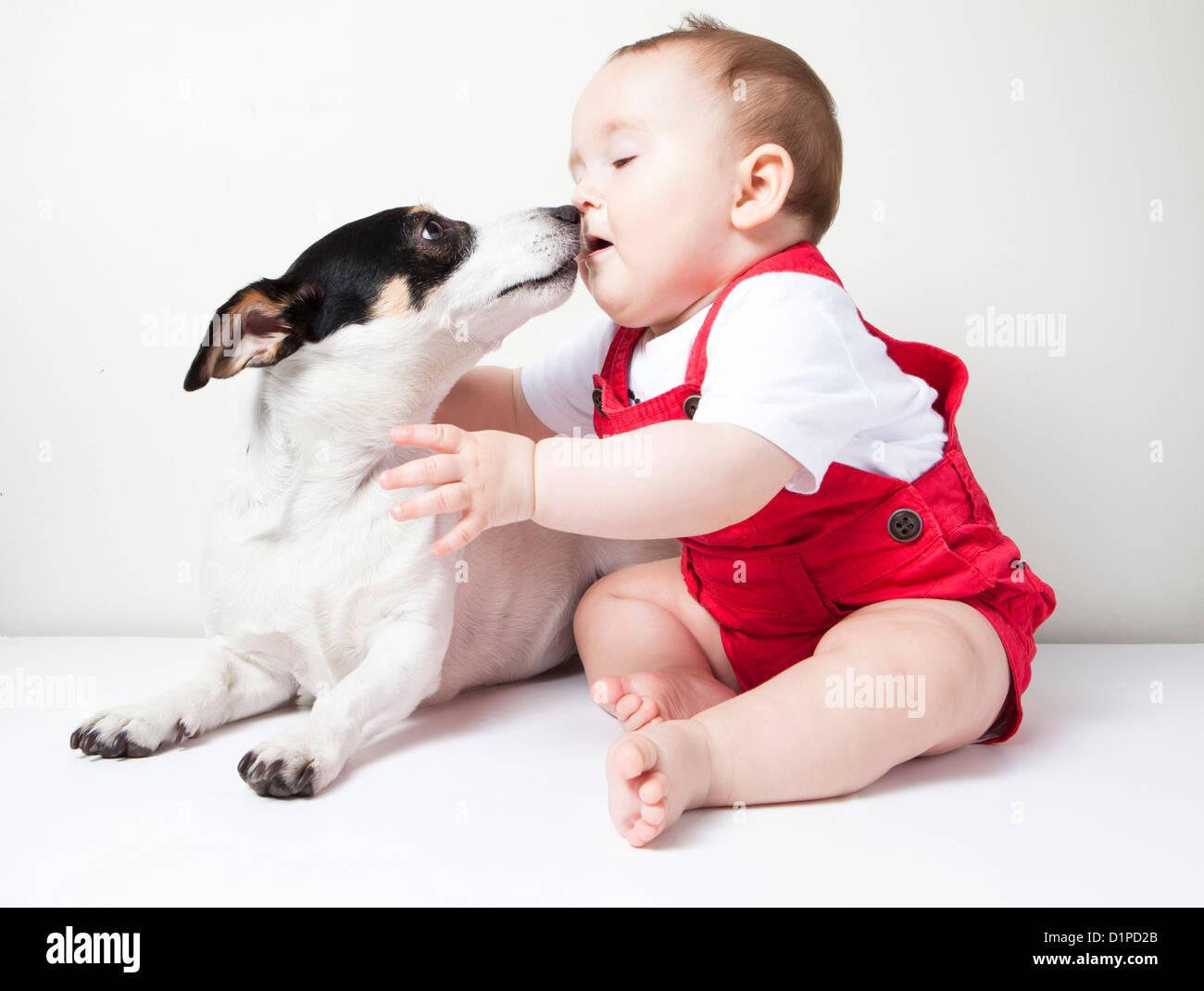 baby girl with dog - Stock Image