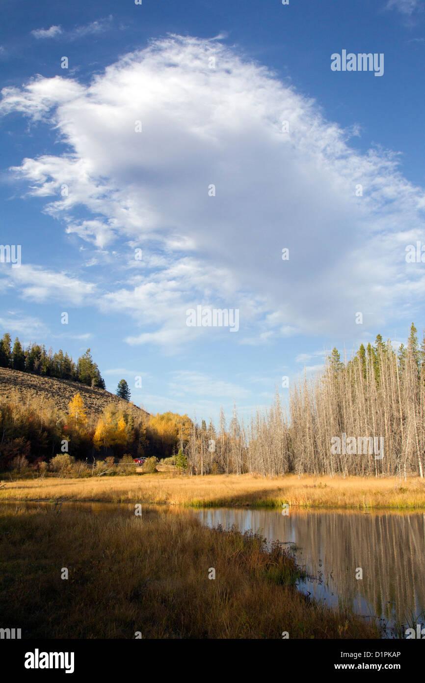 Large Stratus Cloud Stock Photo