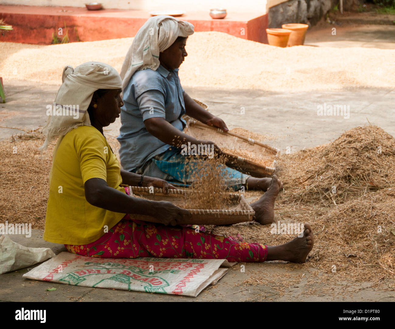 Two women winnowing the chaff - method developed by ancient cultures for separating grain from chaff - Stock Image