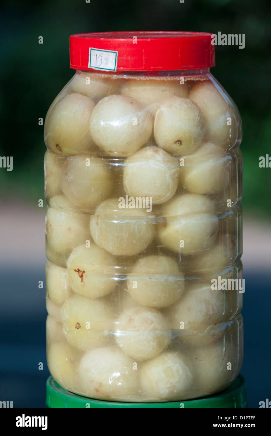 Gooseberry pickle in jar for sale, close up - Stock Image