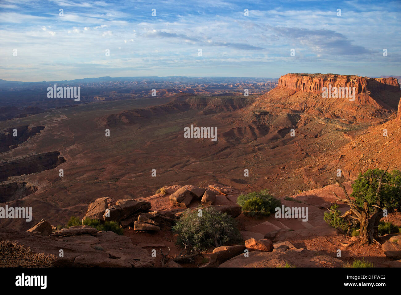Grand View Point Overlook, Canyonlands National Park, Utah, USA - Stock Image