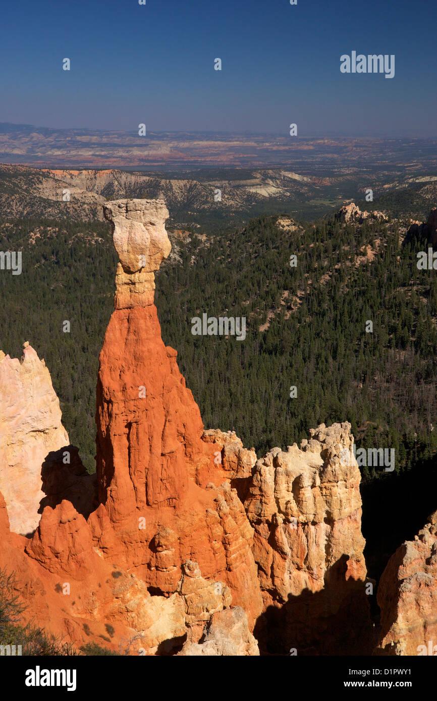 Hoodoo, the Hunter, Agua Canyon, Bryce Canyon National Park, Utah, USA - Stock Image