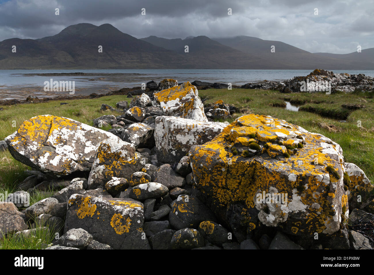 Lichen covered rocks at Loch Na Keal on the Isle of Mull in the Inner Hebrides, Scotland, UK, looking towards Ben - Stock Image
