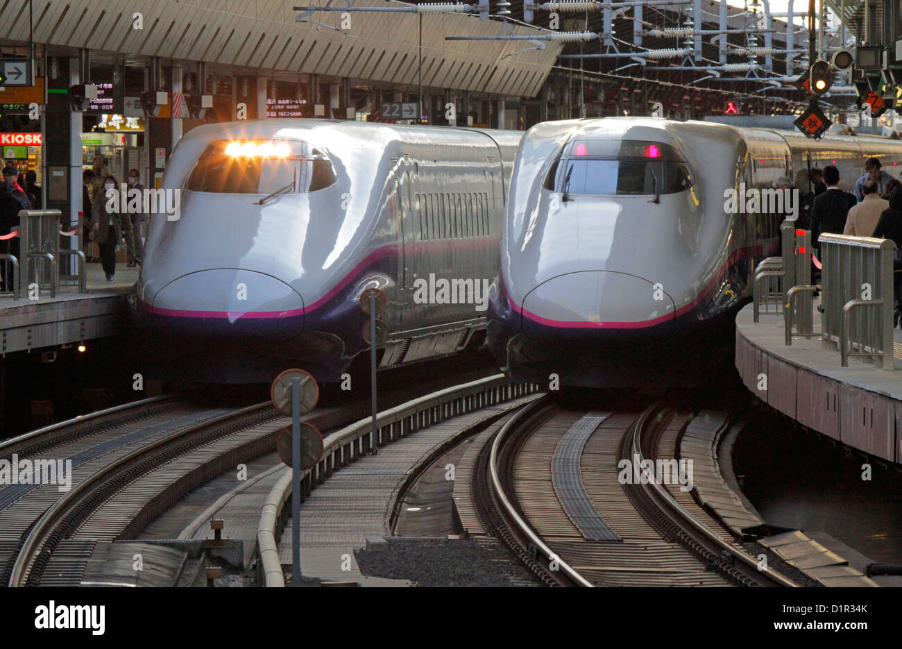The Tohoku Shinkansen E2 series high-speed rail line at Tokyo Station Japan - Stock Image