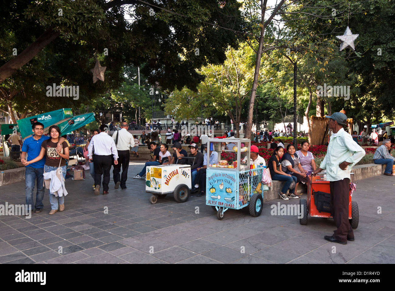 vendors' carts lie in wait for diverse people strolling & sitting under ancient trees in Zocalo at christmastime - Stock Image