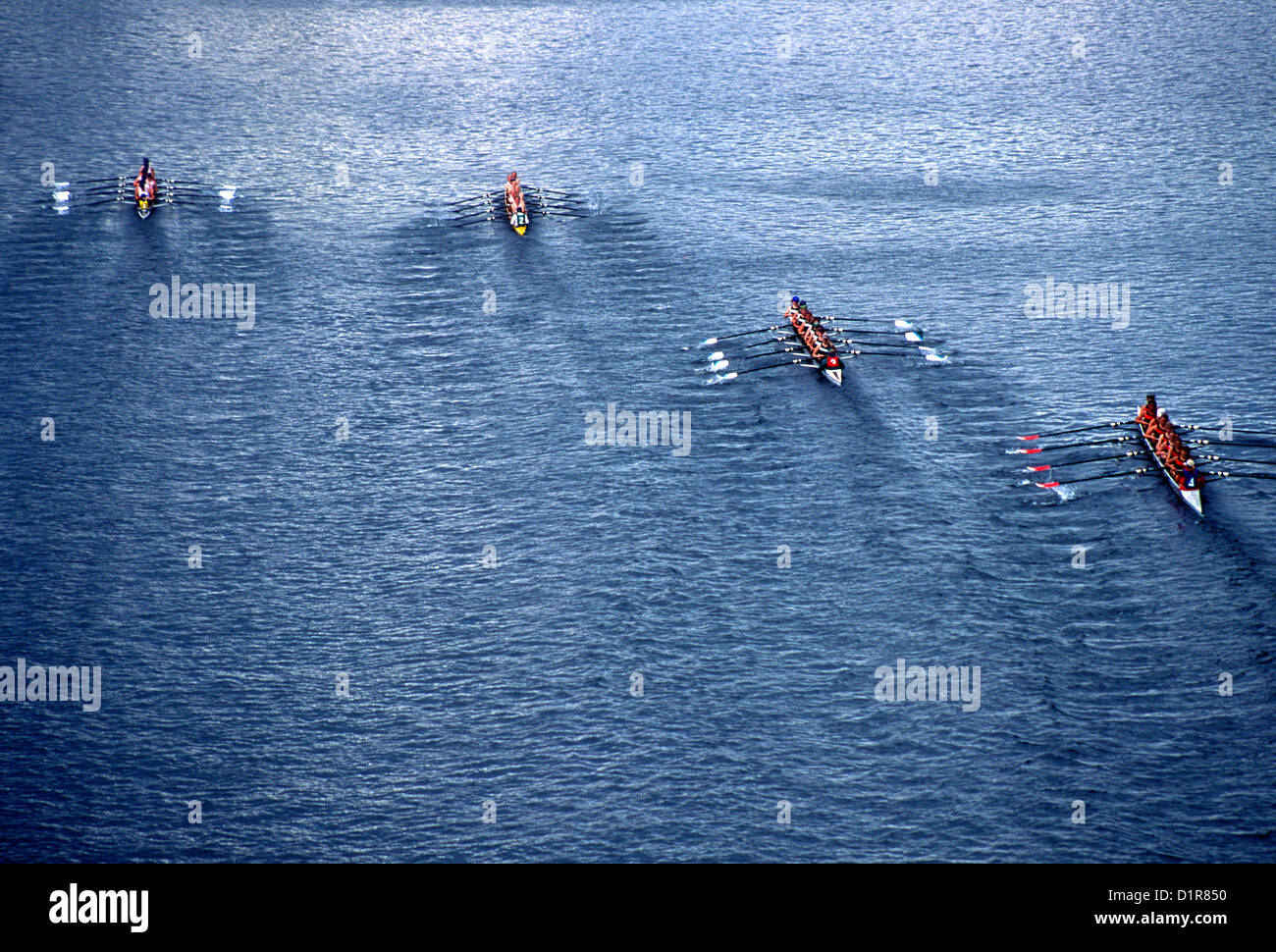 Crew Race, Seattle, Wa - Stock Image