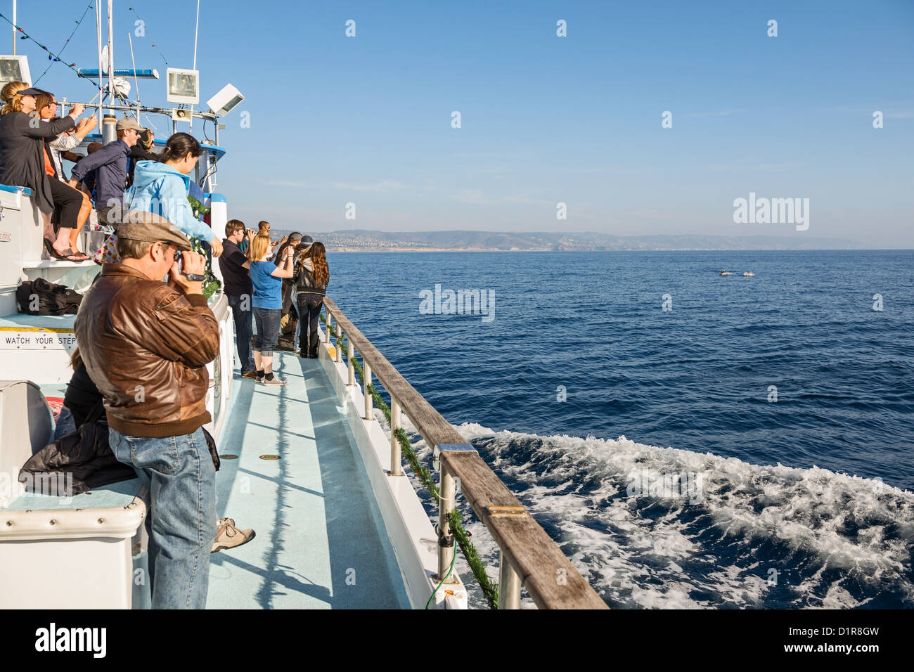 Whale watching off the coast of Newport Beach, California. - Stock Image