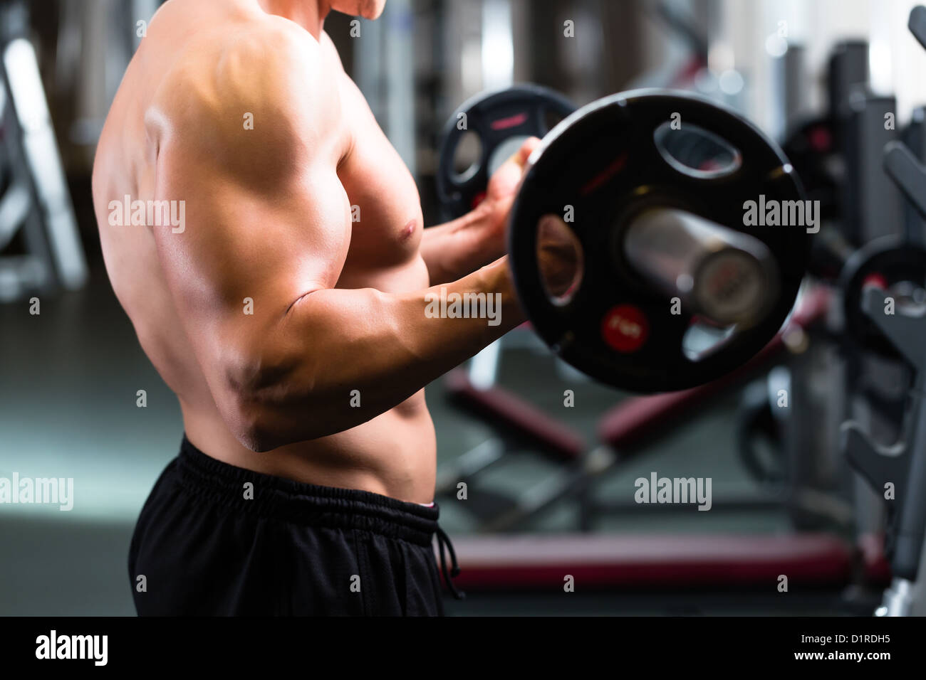 Strong man - bodybuilder with dumbbells in a gym, exercising with a barbell - Stock Image