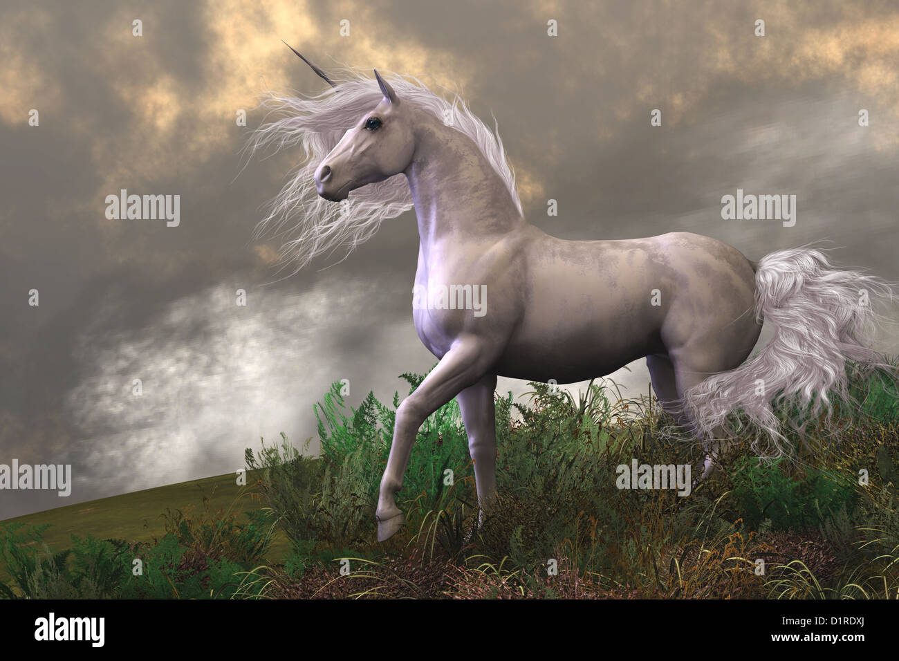 Clouds and mist surround a beautiful unicorn stallion with a white coat. - Stock Image