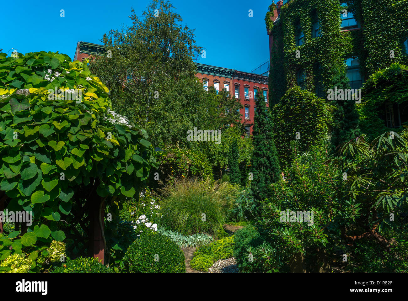 New York CIty, NY, USA, East Village, E. 6th St., Urban Botanical Community Garden Scenic, Summer, Local neighbourhoods - Stock Image