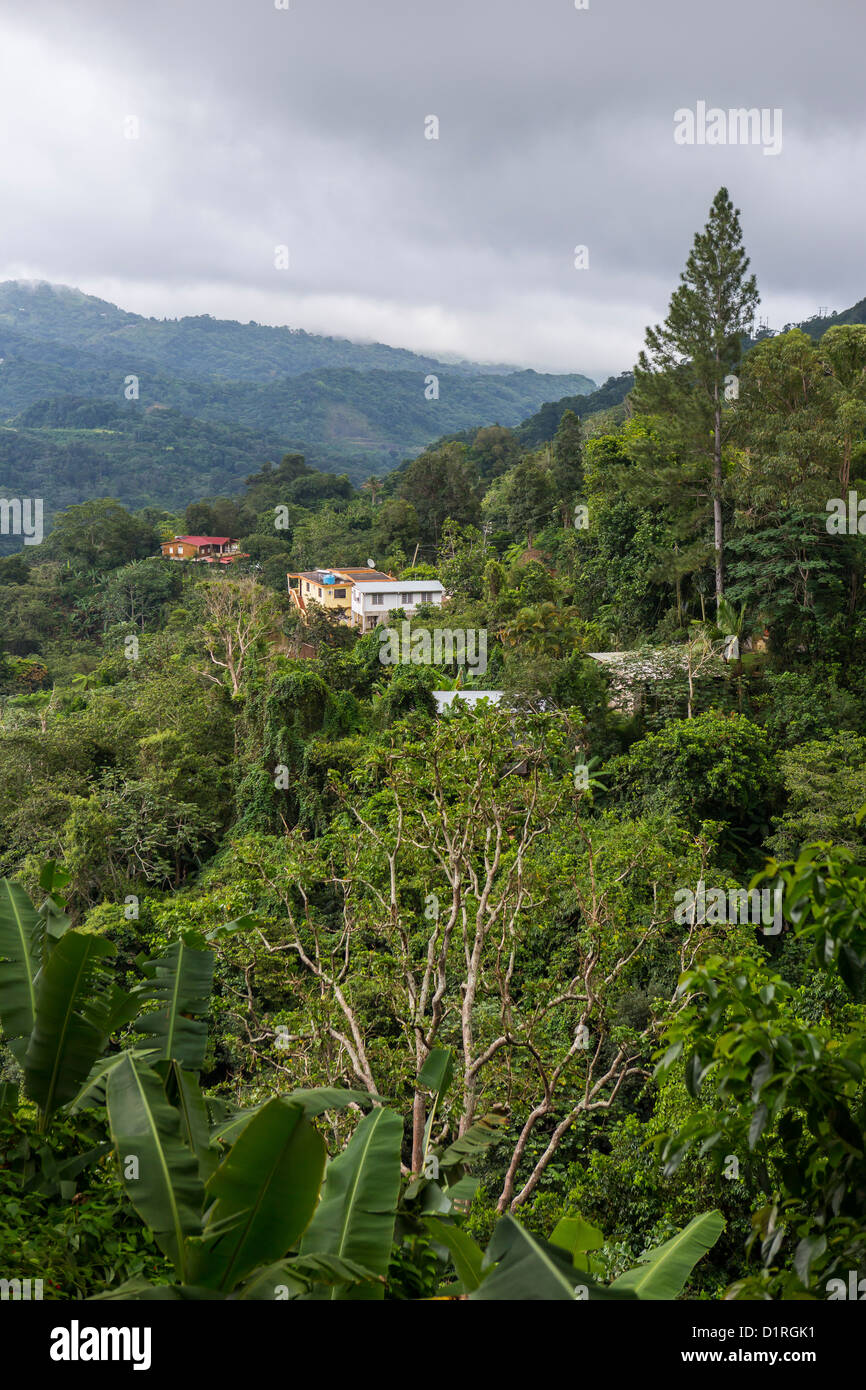 Adjuntas Puerto Rico Homes In Mountains Stock Photo Alamy