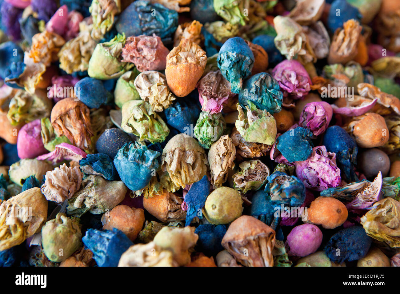 Morocco, Marrakech, colored flowers on market. - Stock Image