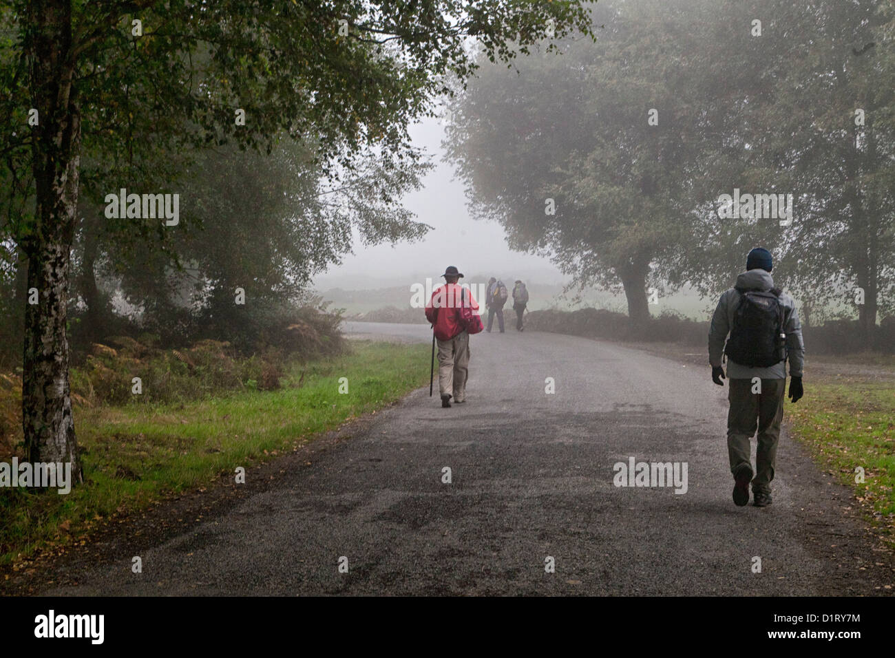 On a foggy morning pilgrims walk from Sarria to Portomarin along a paved road of the Camino to Santiago 'The - Stock Image