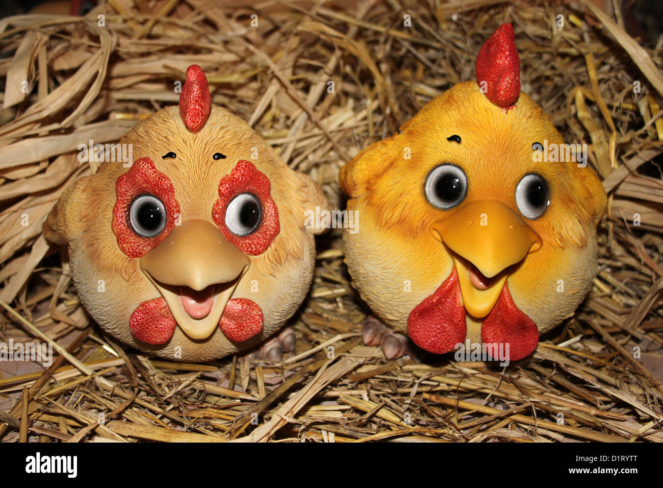 Comical Chucky Hens On Straw - Stock Image