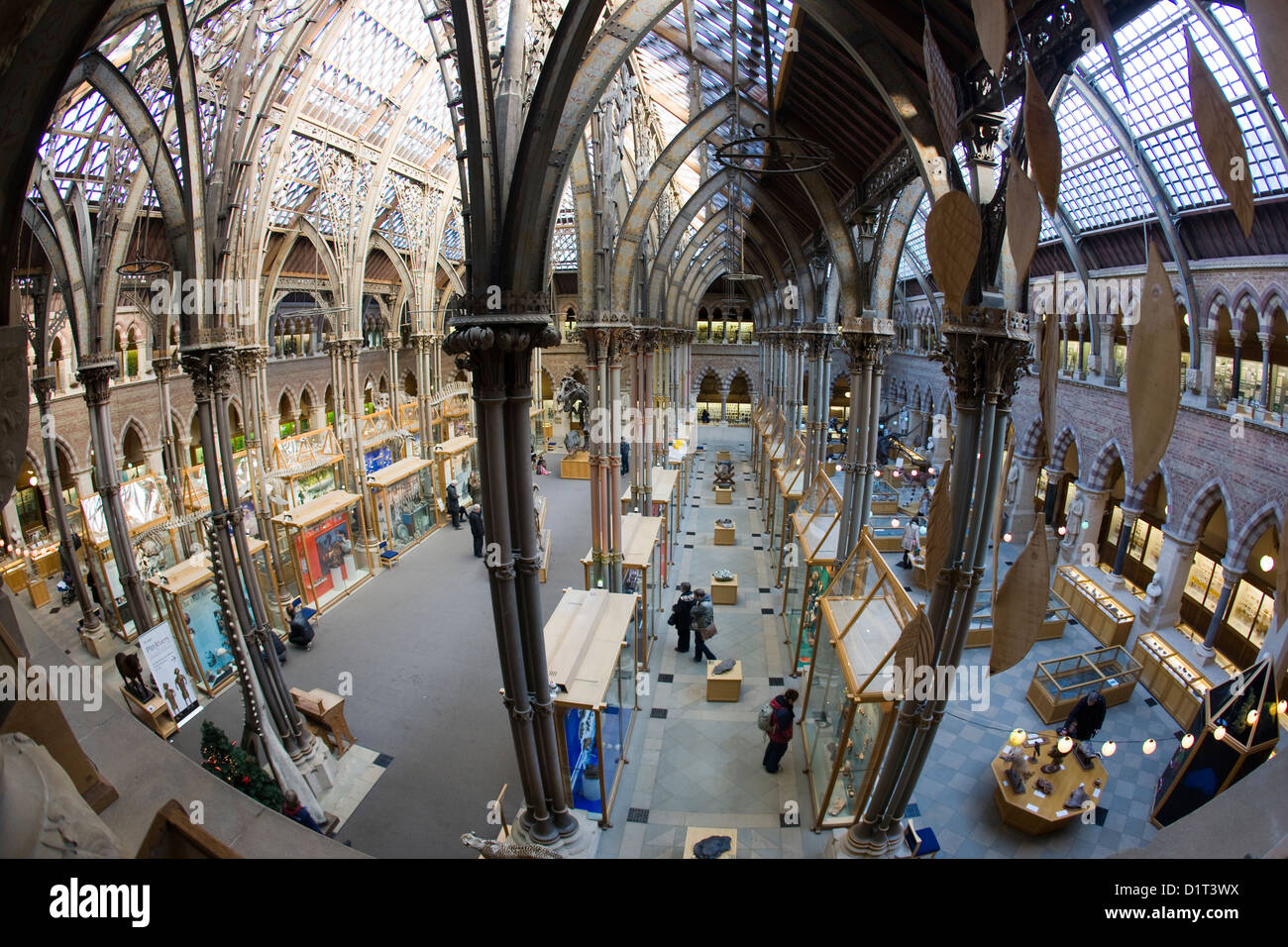 The Natural History Museum in Oxford, UK - Stock Image